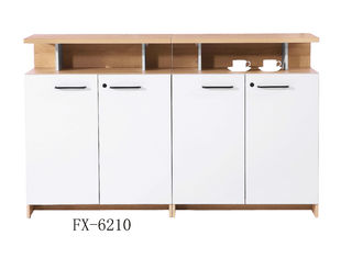 Knock Down MFC Low Two Door File Cabinet For Modern Office furnitures